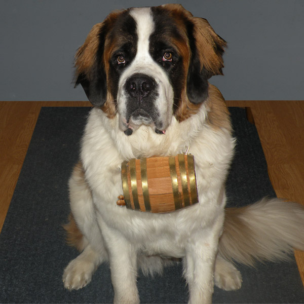 Dog collar barrel