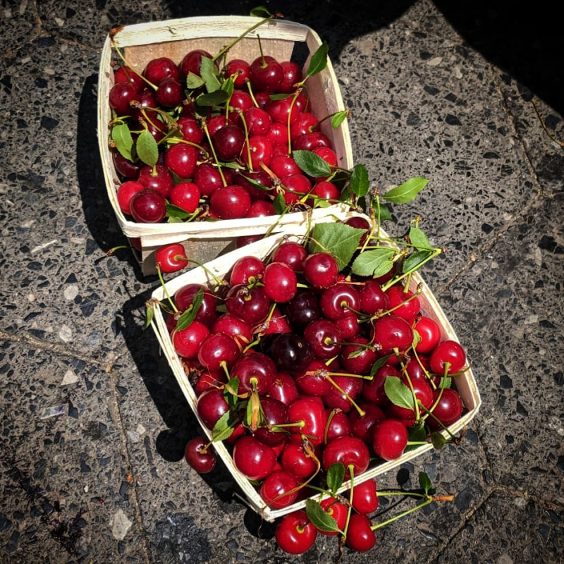 Cherry bounce 1